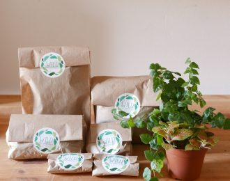 Terrarium kit piante e materiali