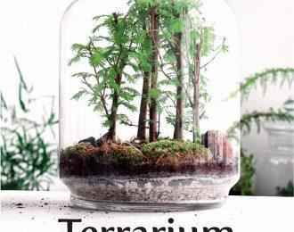 Terrarium. Mondi vegetali sotto vetro