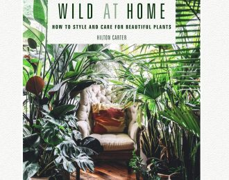 Wild at Home. How to Style and Care for Beautiful Plants